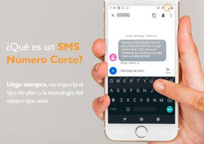 Teleprom-SMS-Campana-1